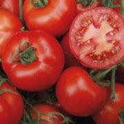 Tomaten (Quelle: Kientzler)